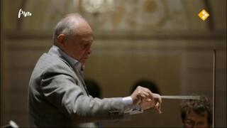 Bloed, zweet en snaren. De mensen van het Koninklijk Concertgebouworkest (seizoen 1)
