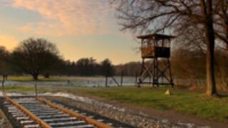 Getekend in Westerbork