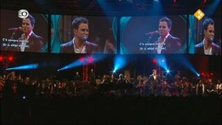 Symphony of Life 2013