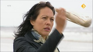 De Buitendienst van nieuws uit de natuur Strand en duin