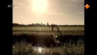 Land van Rama 3