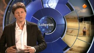 Temple Grandin: Autist tussen de dieren