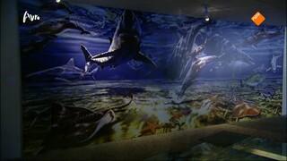Tussen Kunst en Kitsch Klok & Peel Museum