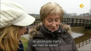 De Wandeling Renée van Tricht