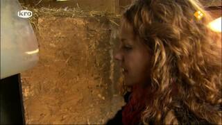 De Wandeling Els Basten, dierenfluisteraar