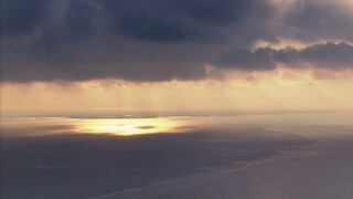 hollands licht