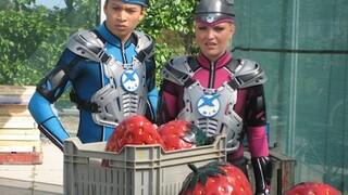 Het vieze fruit