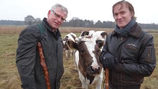 Melk en Honing De strijd voor de oerkoe