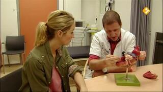 Kernpunt Afl. 12 In het ziekenhuis & Communicatie