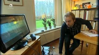Fryslân DOK Faderpaard