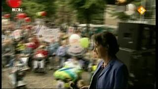 Verpleeghuisarts in de politieke arena