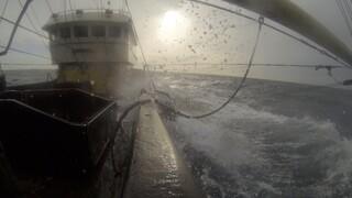 Dit is de Dag Het gevecht van een visserman