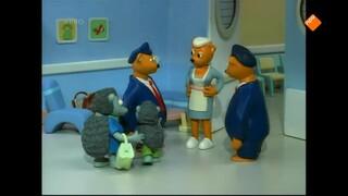 Heuvelland Ziekenhuis The hyper hedgehog