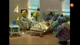 Heuvelland Ziekenhuis Fond memory