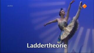 Laddertheorie