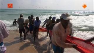 Sri Lanka, het geschonden paradijs. Boeddhisten in oorlog en vrede