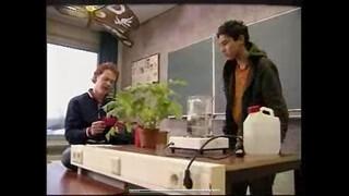 Bio-bits vmbo: planten