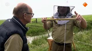 Arjan geeft kijkje in bijenkorf