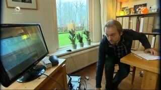 Fryslân Dok - Faderpaard