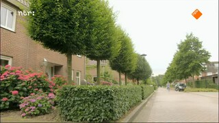 Wildpark Nederland