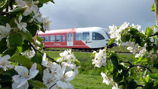 Rail Away - Nederland: 4-seizoenen Special