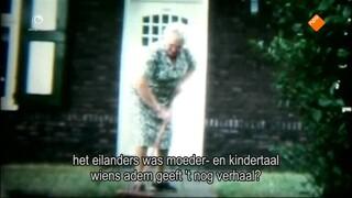 Fryslân Dok - Henriette , Een Vedette Van De Lytje Pole