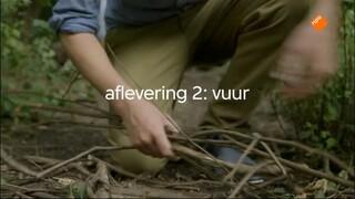 Pieter In De Prehistorie - Vuur