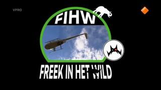 Freek in het wild