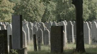 Dood Voor Beginners - Aflevering 5: Het Olifantenkerkhof