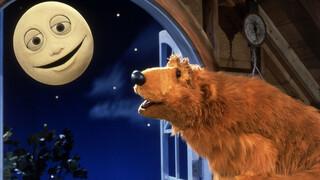 Bruine beer in het blauwe huis Verschillende kleuren