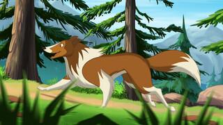 Lassie Animated Spinnenbeet!