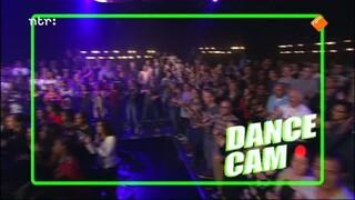 De Dino Show