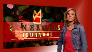 Intocht Sinterklaas 2014 met doventolk