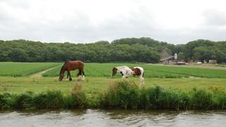 Aflevering 7 Brabant en Gelderland