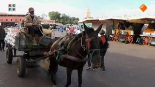 Aangekomen in Marokko