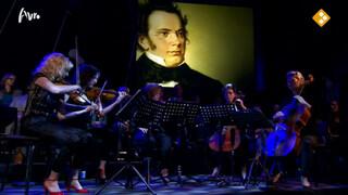Ragazze kwartet en Docters van Leeuwen spelen Schubert