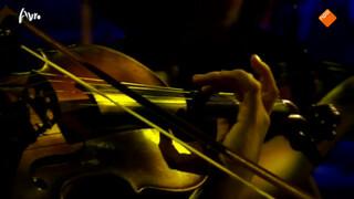 Dvořáks heimwee door het Ragazze Quartet