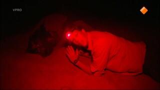 Freeks Wilde Wereld - Lederschildpad Vinden Reuzenpad