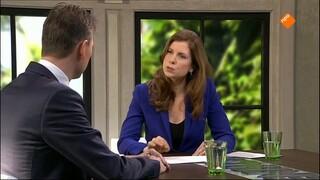 Buitenhof - Halbe Zijlstra, Laura Starink, Adriaan Jacobovits, Adriaan Geuze, Ikenna Azuike