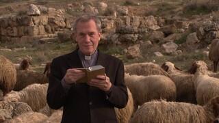 Bodar In Het Heilige Land - Jezus' Jeugd