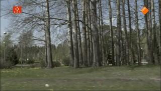 Documentaires Boeddhistische Omroep - Pekka