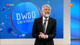 DWDD University presenteert: Het Brein door Erik Scherder
