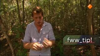 Freeks Wilde Wereld - De Orang-oetan