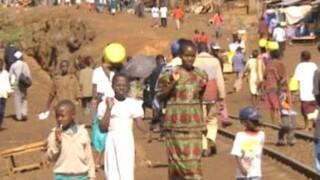 Berichten uit de sloppenwijk