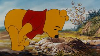 Leuke verhaaltjes van Winnie de Poeh Wat Teigetjes goed kunnen
