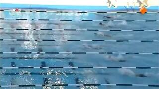 Nos Studio Sport - Wk Zwemmen