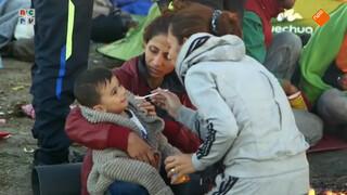 Vluchtelingen in Europa en het Midden-Oosten