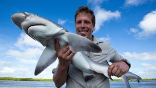 Freek Vonk In Australië - Zeeën
