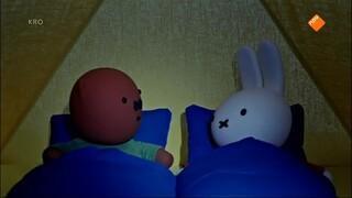 Nijntje En Haar Vriendjes - Nijntje En Knorretje Slapen In 1 Tent