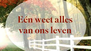 Nederland Zingt op Zondag Nederland Zingt op Zondag